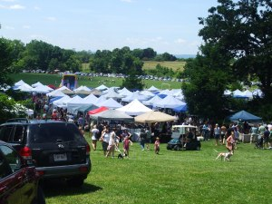 South Windsor Strawberry Fest and Craft Fair