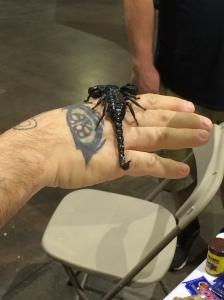 A scorpion at Terror Con.