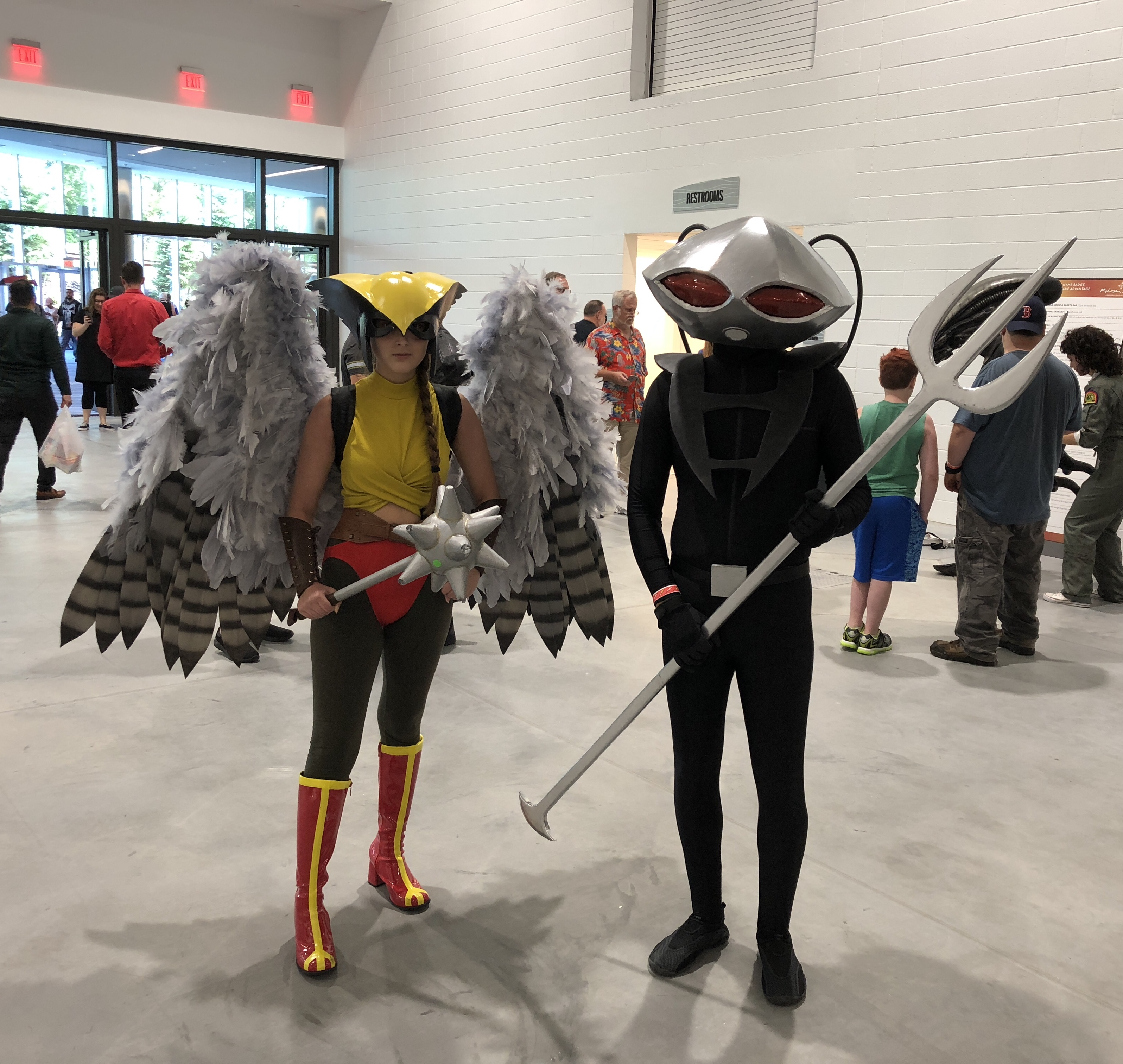Hawkgirl and Black Mantis.